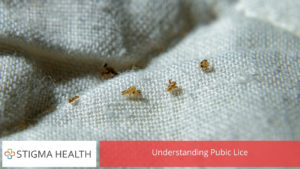 Understanding Pubic Lice